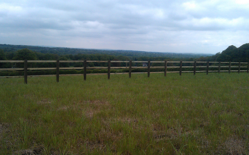 equestrian5